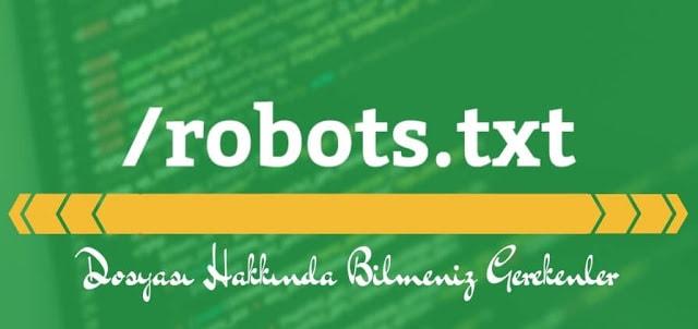 Robots.txt Dosyası Hakkında Bilmeniz Gerekenler