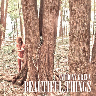 Anthony Green - Beautiful Things (2012)