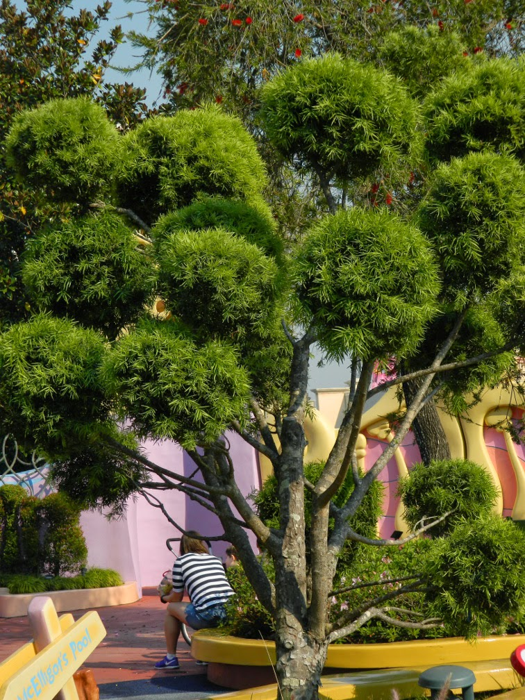 Niwaki  Seuss Landing Universal Studios Orlando by garden muses-not another Toronto garden blog
