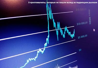 3 криптовалюты, которые не пошли вслед за падающим рынком