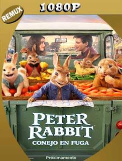 Peter Rabbit: Conejo en fuga (2021) REMUX [1080p] Latino [GoogleDrive] PGD