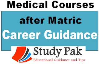 Mecal Diploma Courses for Maric students