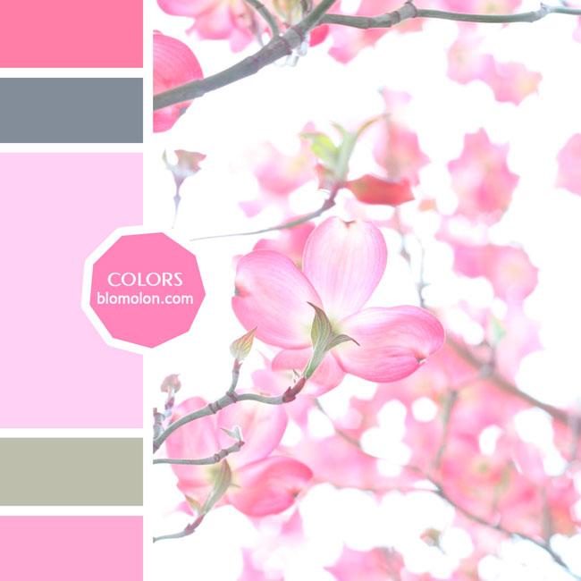 variedad_en_color_moodboard_81