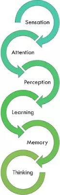 Perbedaan Psikologi dan Sosiologi -1