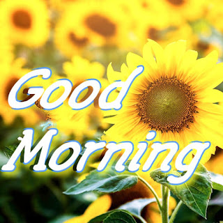 good morning images, picture