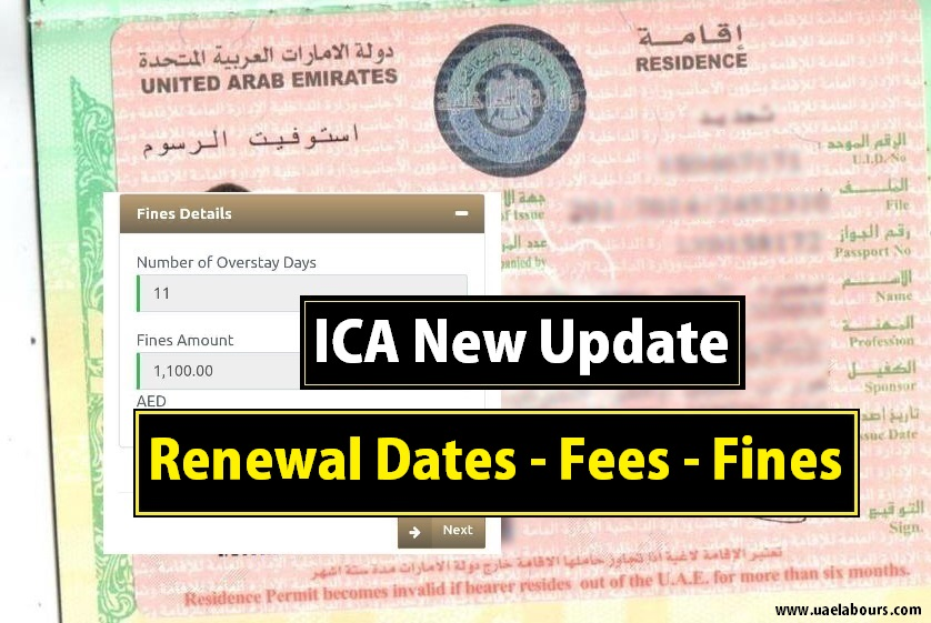 Breaking Ica Announced Renewal Dates For Expired Visas And Emirates Id S Uae Labours Blog