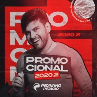 Pedrinho Pegação - Promocional - 2020.2