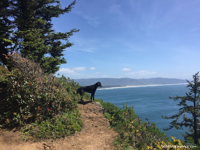 Views from the Cape Trail