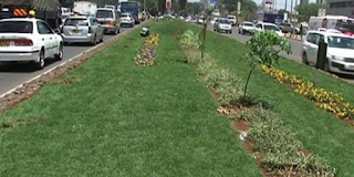 Kidero grass project to be relaunched soon.