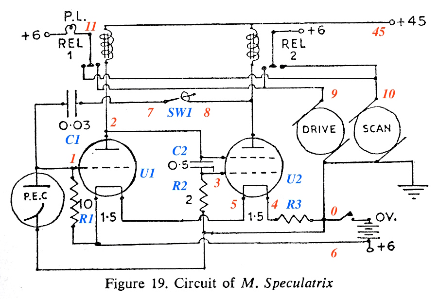the figure below is the circuit diagram for elsie from walter's book, 'the  living brain' (p200)  i've annotated it with additional component numbers  (blue),