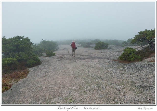 Beachcroft Trail: ... into the clouds...
