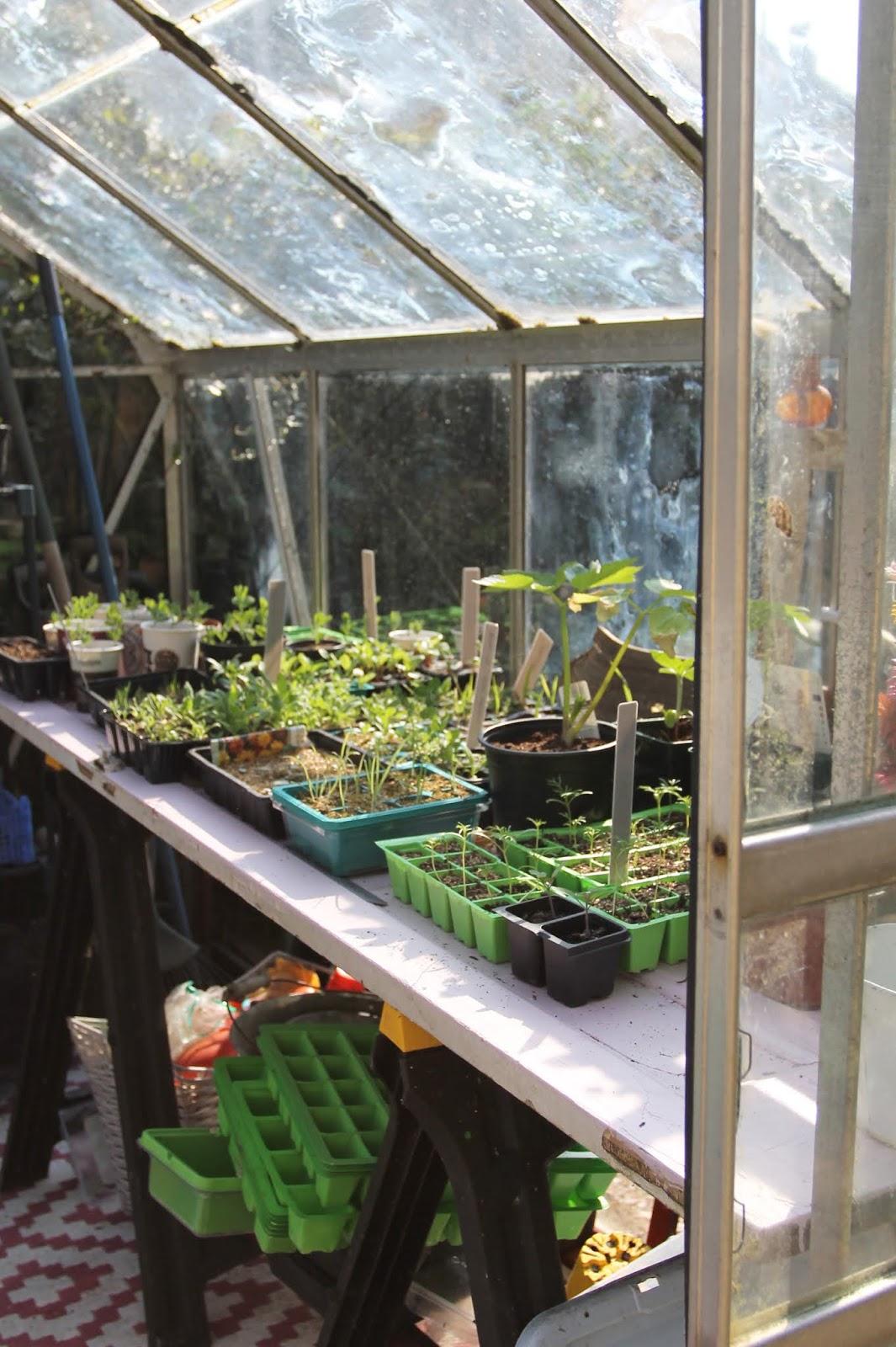 A Greenhouse mini makeover