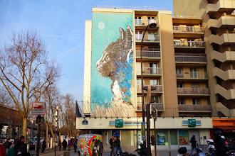 Sunday Street Art : C215 - rue Nationale - Paris 13