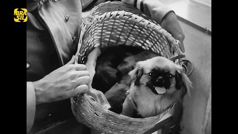MAZZAROPI, A CARROCINHA (HDTV/1080P/NACIONAL) - 1955 Maza%2B21