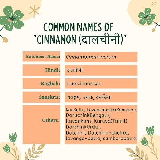 common names of Cinnamon (Cinnamomum Verum) Herbal arcade