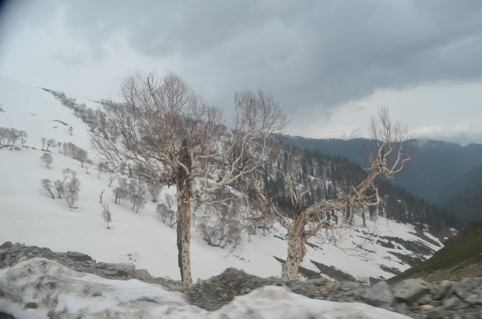 On the way to Sinthan Top