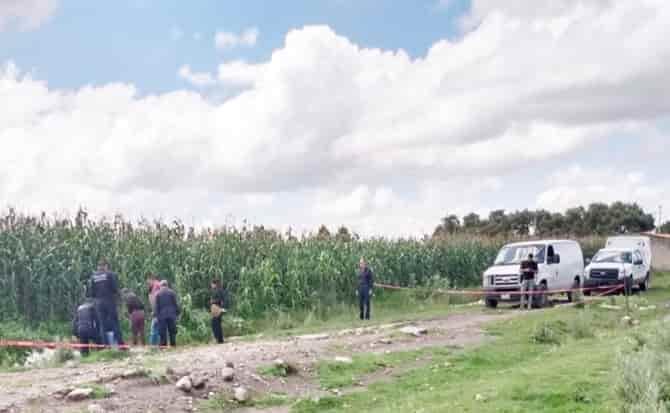 Terreno, maiz, camino,