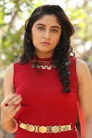 Telugu Actress Zahida Sam Latest Pos in Red Gown at RF Films New Movie Opening  0098.JPG