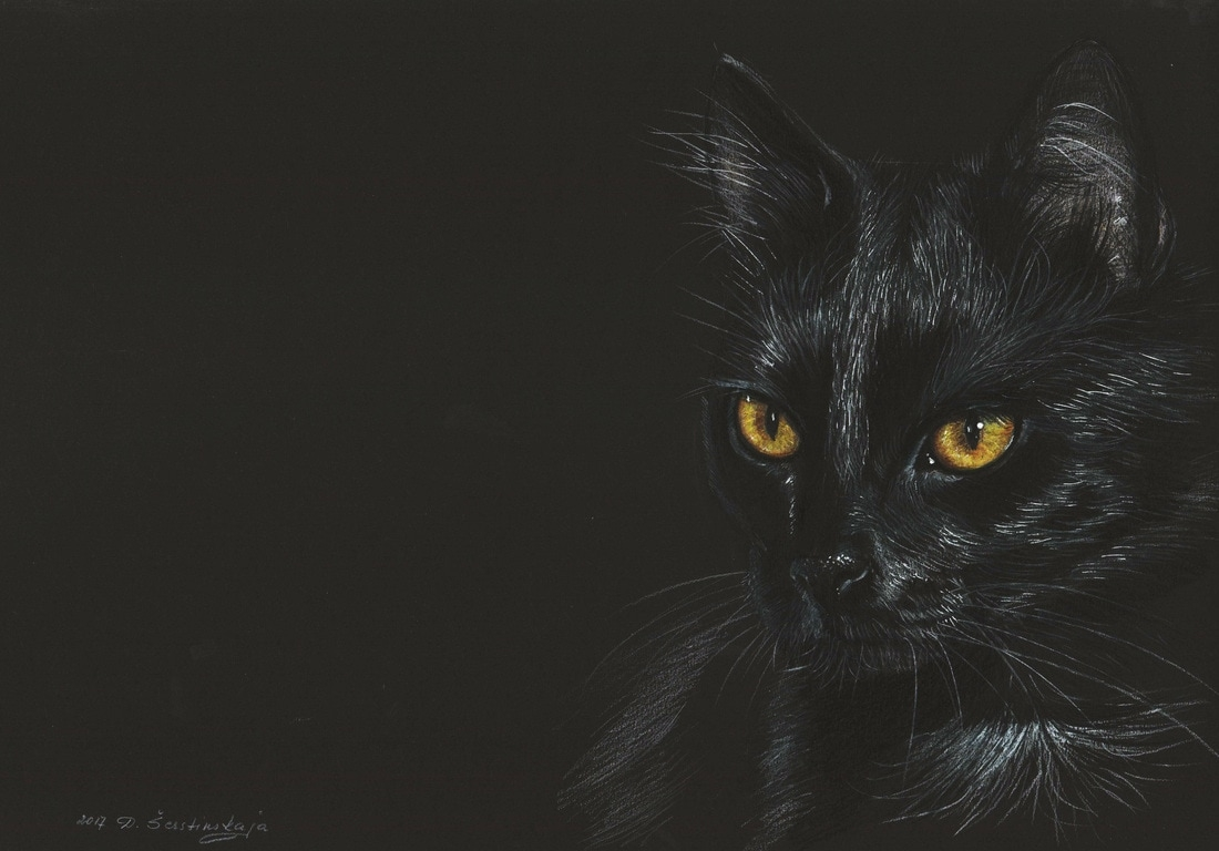 04-Black-Cat-Danguole-Serstinskaja-Paintings-of-Cats-that-look-like-Photographs