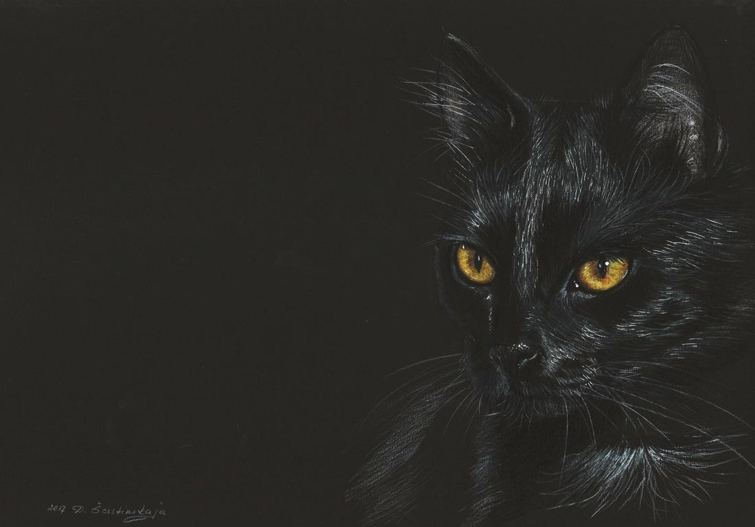 04-Black-Cat-Danguole-Serstinskaja-Paintings-of-Cats-that-look-like-Photographs