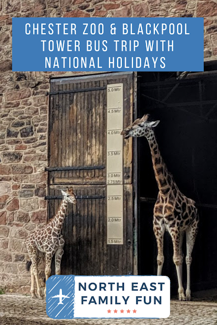 Chester Zoo & Blackpool Tower Bus Trip with National Holidays