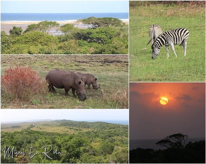 Fauna-paisajes-Isimangaliso