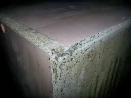 Bed Bugs Infest furniture
