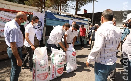 Diyarbakır Büyükşehir Belediyesinin desteğiyle Diyarbakır karpuzu özgünlüğünü koruyacak