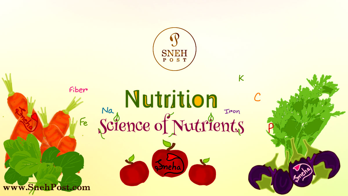 Nutritional Status: 7 Types and Whopping Food Sources