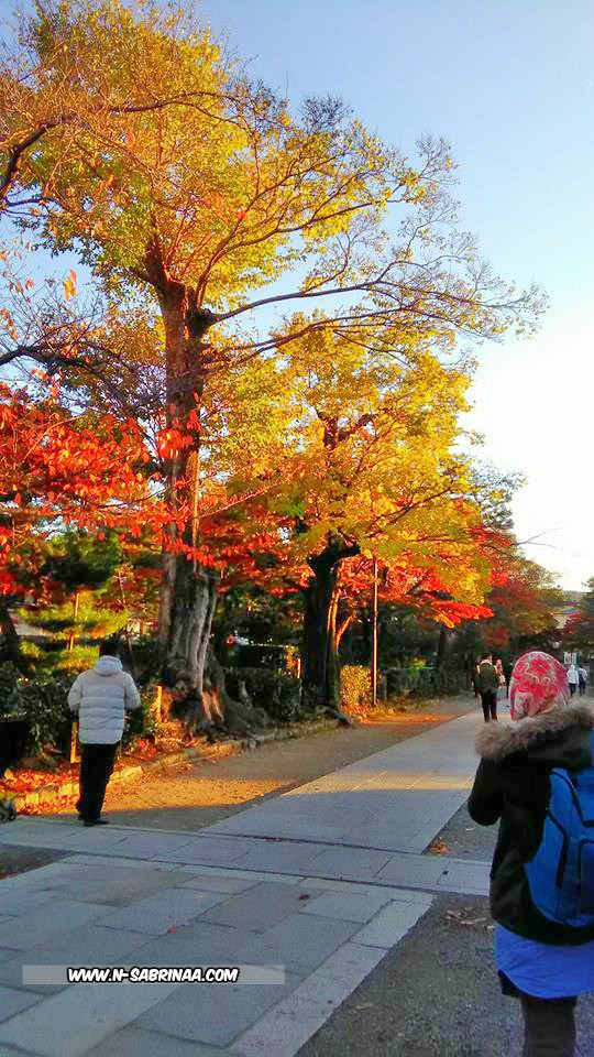 pemandangan musim luruh di gion kyoto