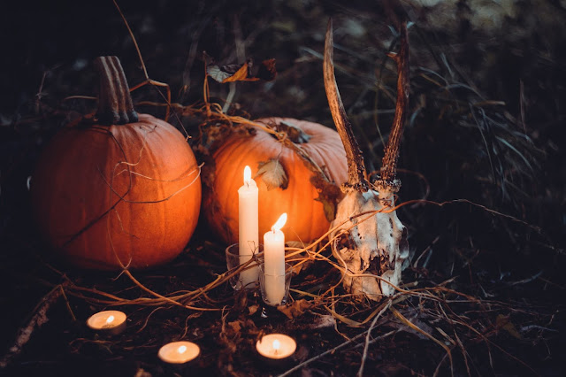 Pumpkins with deer skull and dried leaves