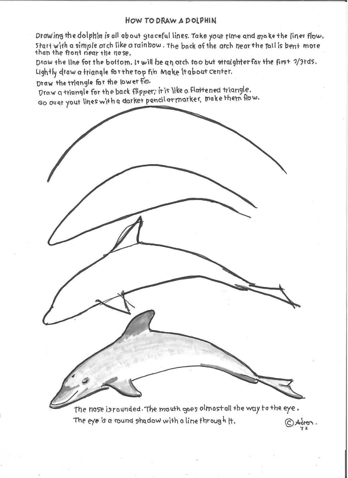 Dolphins Worksheet For Kindergarten