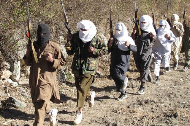 ISIS da Al-Qaeda 'sun kutsa yankin arewa maso yammacin Najeriya