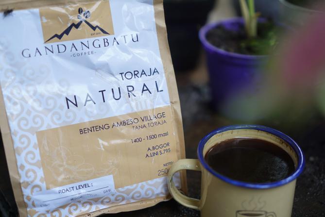 Gandang Batu Coffee Toraja