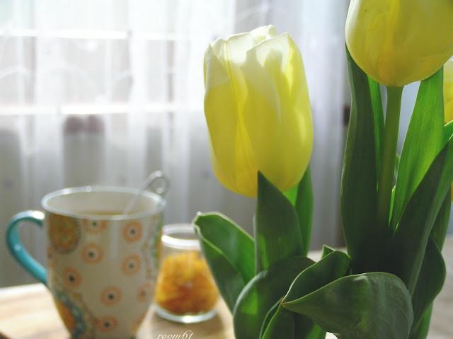 herbata-tulipan