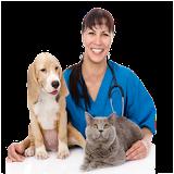 veterinary in Spanish