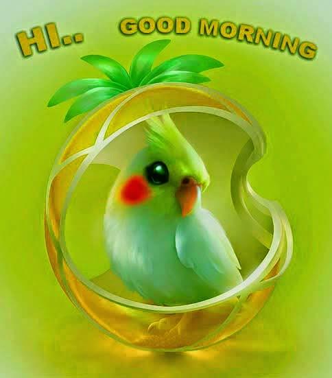 Good Morning Beautiful Photos Download : Allfreshwallpaper lovely and beautiful good morning