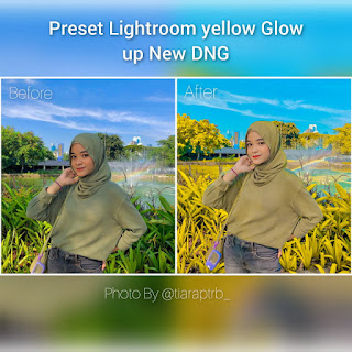 Preset Lightroom Yellow Glow up New DNG