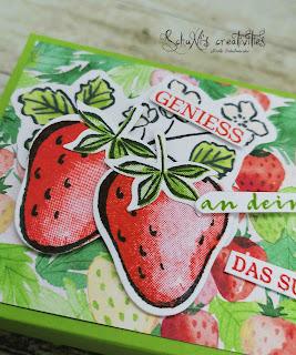 Produktpaket Beerenstark, Designerpapier SAB Sommerbeeren, Blends