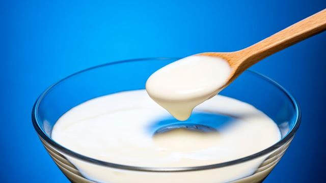Greek Style Yogurt vs. Regular Yogurt