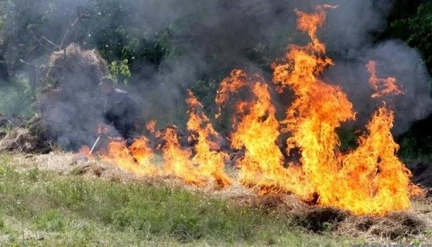 В Україні через спеку оголосили надзвичайний рівень пожежної небезпеки