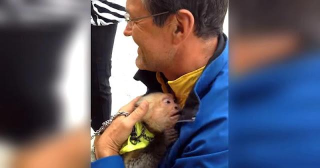 Цирковая обезьянка расплакалась от счастья при встрече с хозяином (Видео)