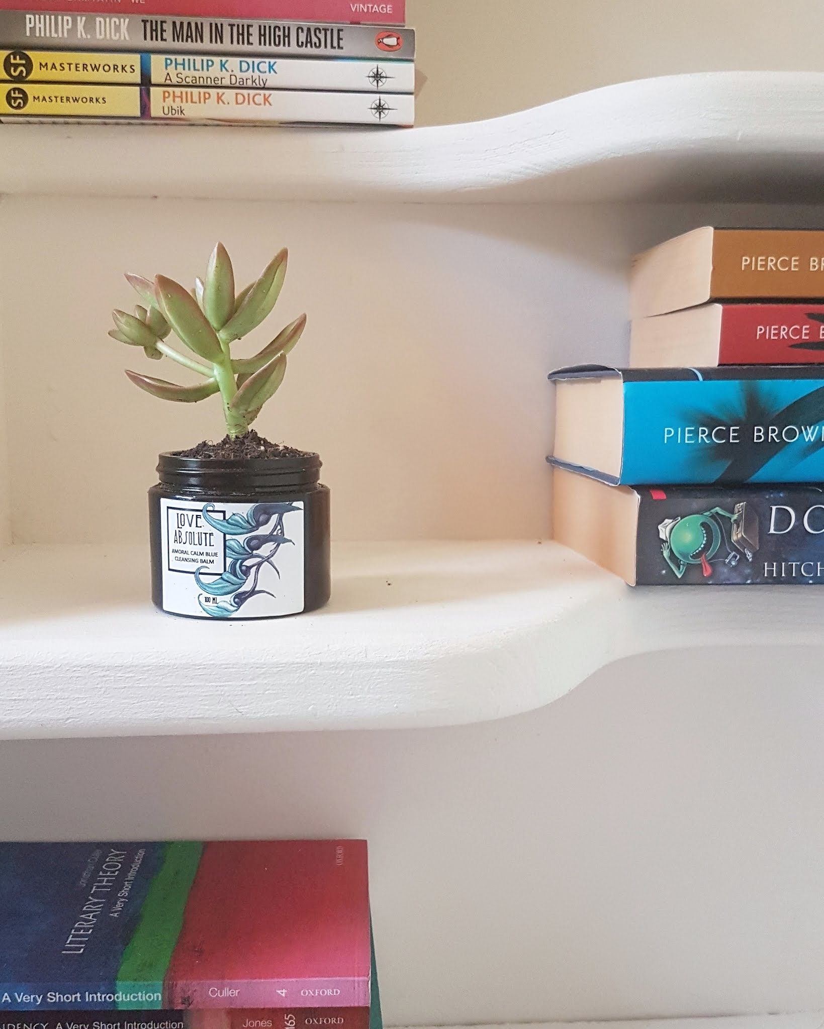 Love Absolute Blue Cleanser upcycled into a baby plant pot