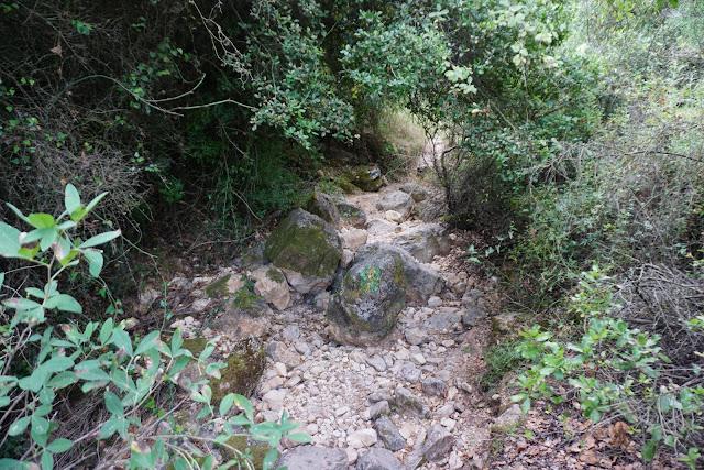 סלעי גיר בנחל קובי