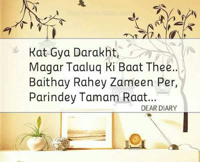 dear diary se images shayari and love quotes