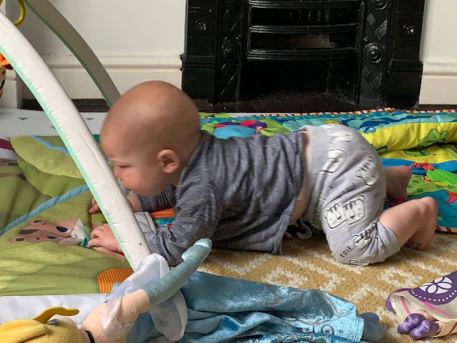 Baby Boy up on all fours in a crawling position