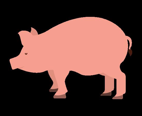 Cortes del cerdo en portugués, inglés y español