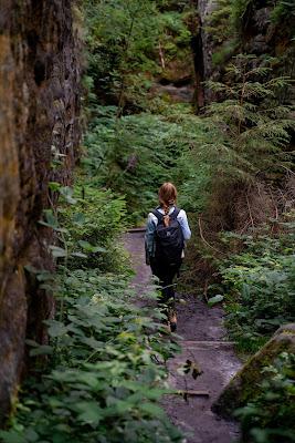 Malerweg Etappe 7 | Von Kurort Gohrisch bis Weißig | Wandern Sächsische Schweiz | Pfaffenstein – Festung Königstein 15