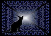 Adivinación con el tarot: ¿superstición o conocimiento?