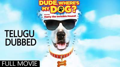 Dude, Where's My Dog 2014 Full Movies Hindi Telugu Tamil Download 4Dude, Where's My Dog 2014 Full Movies Hindi Telugu Tamil Download 480p80p